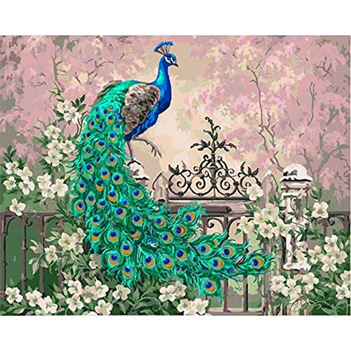 Vazelu DIY Digitale Malen Nach Zahlen Kits Jade Pfau Ölgemälde Wandbild Kits Färbung Wandkunst Bild Geschenk Rahmenlose 40x50cm (16 * 20')