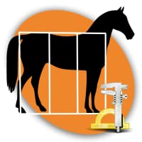 Pferde Exterieurbeurteilung