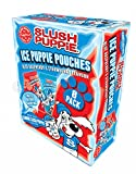 Best Ice Pops - Slush Puppie Ice Puppie Pouches Blue Raspberry Review