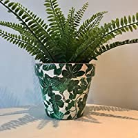 Green Leaf Bird & Coral Terracotta Plant Pot 15.5cm