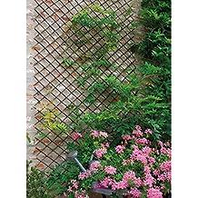 support pour plantes grimpantes. Black Bedroom Furniture Sets. Home Design Ideas