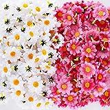 JNCH (Weiß+Rosa) 200 Stücke Künstliche Blütenköpfe Blumenköpfe Gerbera Gerbera Künstlich Kopf Kunstblumen Seidenblumen Klein deko für Hochzeit Feste Partei Haus DIY Basteln