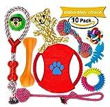 FONPOO Hundespielzeug, Welpenspielzeug Baumwollseil Hunde Spielzeug kauspielzeug Zahnreinigung Tauziehen Spielzeugset - Packung mit 10 PCS