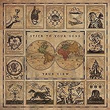 True View (lim. Gold Vinyl) [Vinyl LP]