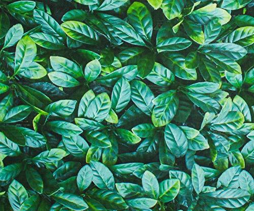Brise-Vue Rouleau Décoratif Feuilles pour Jardin 1 x 5m - par Papillon