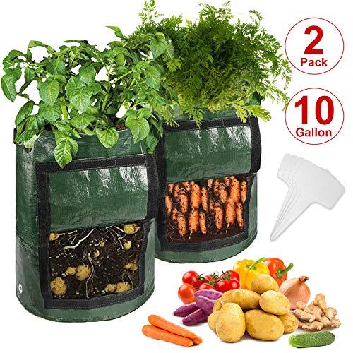N NEWKOIN 2pcs 10 Gallonen Kartoffeln Pflanzbeutel, Pflanzensäcke mit Drainagelöchern & Seitentür & Griffe, Garten Pflanztaschen Stofftöpfe für Gemüse-&Blumenanbau mit 4er Pflanzenetiketten(Grün)