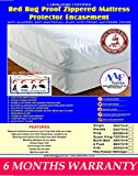 Lab Certified Bed Bug Proof Mattress Cover Rust Protection Cover Absorbent Allergy Tested Anti Dust Mite Anti Bacterial Non Noisy Ease Allergy Itch 6 Months Guarantee