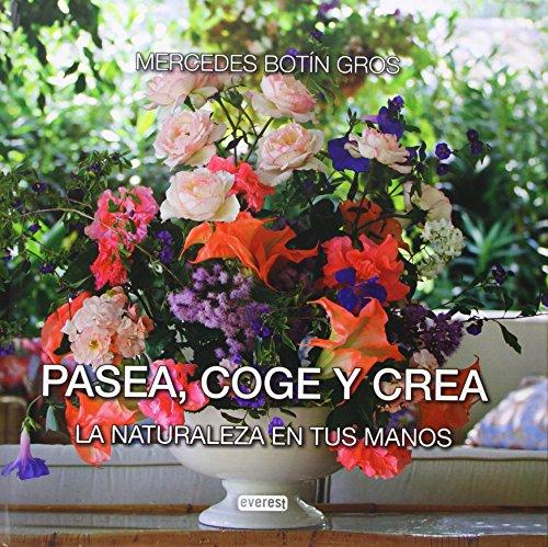 Pasea, Coge Y Crea por Mercedes Botin Gros