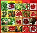 Chili Set D: von pikant bis extrem scharf Chilisamen Set Mischung Samen aus aller Welt Peperoni Chilli
