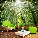 Fototapete Foto Fototapete Benutzerdefinierte Fototapete Bamboo Grove 3D Wand Gemälde Hintergrund Wandtapete Wandbild Wohnzimmer Schlafzimmer Dekoration, 400Cmx280Cm