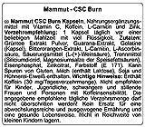 Mammut Burner CSC, mit Grüntee Extrakt, Guarana-Extrakt, L-Carnitin,  90 St. Dose (1 x 68.01 g) - 3