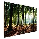 Feeby.eu Wandbild, Deco Bild, Gedrucktes Bild, Deco Panel, Bild, 70x100 cm, Wald, Baum, Landschaft, Natur, GRÜN