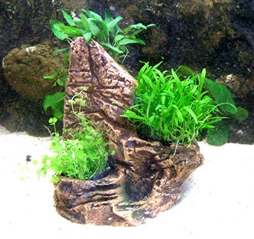 Aquarium Terrarium Pflanzentopf für 3 Pflanzen Topf Deko Felsen Wasserpflanzen