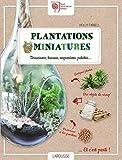Plantations miniatures: Terrariums, bocaux, suspensions, palettes.