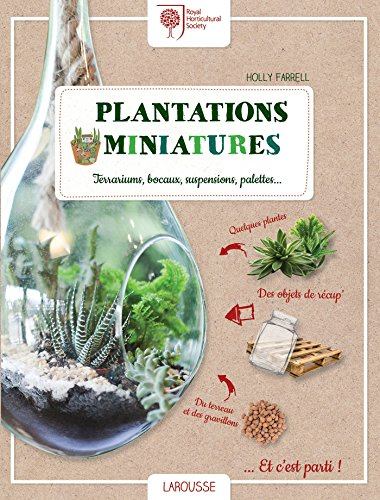 Plantations miniatures: Terrariums, bocaux, suspensions, palettes. par Holly FARRELL