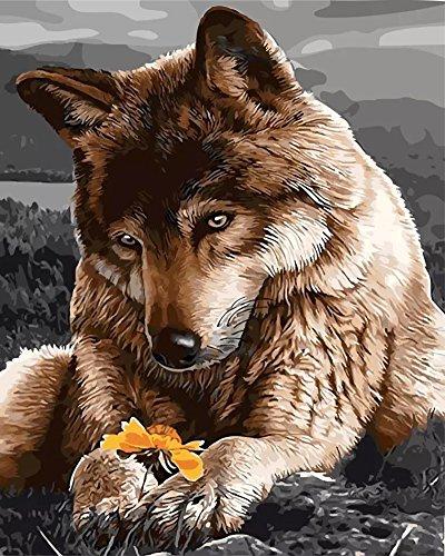 OBELLA Malen nach Zahlen Kits || Zärtlichkeit Wolf Tenderness Wolf 50 x 40 cm || Malen nach Zahlen, DIGITAL Ölgemälde (Mit Rahmen) (Erwachsene Wolf Sexy)