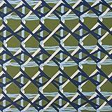 SCHÖNER LEBEN. Baumwolljersey Jersey Retro Linien Maschendraht grün blau weiß 1,5m Breite