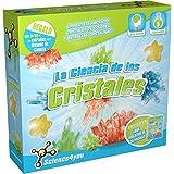 Science4you - La ciencia de los cristales, juguete científico y educativo ( 489810)