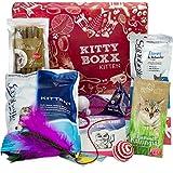 Kitty-Boxx Kitten (13 Teile) Geschenk für Katzenliebhaber I Geschenkbox mit Katzenspielzeug, Katzenfutter, Pflegeprodukten UVM als Geschenk für Katzenbesitzer & Junge Katzen, Katzenbabys