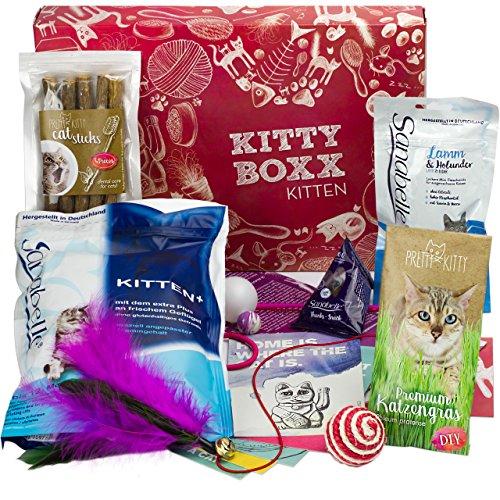 BOXX Kitty Kitten (13 Teile) Geschenk für Katzenliebhaber I Geschenkbox mit Katzenspielzeug, Katzenfutter, Pflegeprodukten uvm als Geschenk für Katzenbesitzer & junge Katzen, Katzenbabys