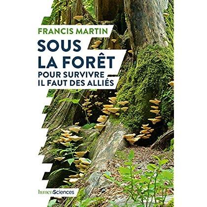 Sous la forêt : Pour survivre il faut des alliés