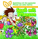 SAFLAX - Anzuchtset - Spaß mit Pflanzen - Groß - Mit 3 Samensorten, Gewächshaus, Anzuchtsubstrat, Zellfasertöpfe zum Umtopfen und Anleitung