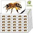 480x Bee Stickers (38 x 21mm) High Quality Self Adhesive Animal Labels By Zooify.