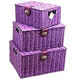 Arpan Set von 3Kunstharz Woven Aufbewahrungskorb mit Deckel & Lock–Violett