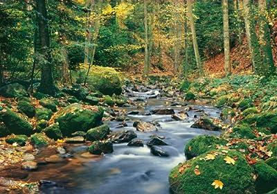 1art1 40547 Wälder - Waldfluss 8-teilig, Fototapete Poster-Tapete (368 x 254 cm) von 1art1 auf TapetenShop
