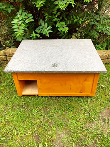Hedgehog House / Feeder