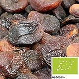 5kg BIO Aprikosen getrocknet, versandkostenfrei (in D), leckere Trockenfrüchte ungeschwefelt und ungezuckert aus kbA