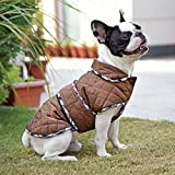 #9: HUFT Grrrberry Jacket For Dogs - 5XL