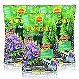 3x Compo Sana Graberde 20 Liter - Dekorative, tiefschwarze Optik - Blumenerde