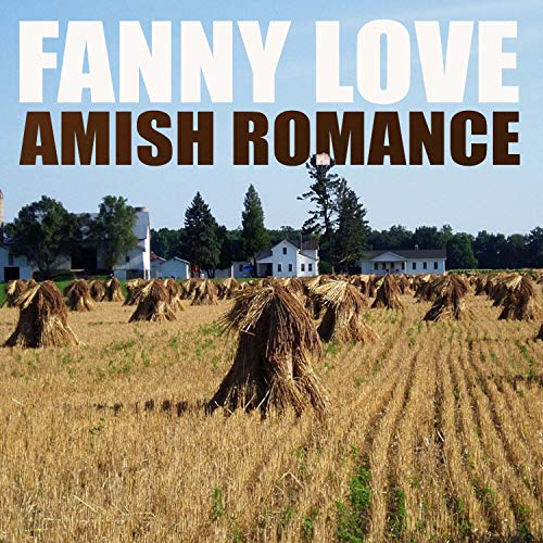 Amish Romance, Pt. 4 - Amish Vier