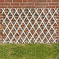 Gärtner Pötschke Rankspalier aus Kunststoff, 80 x 200 cm von Gärtner Pötschke - Du und dein Garten