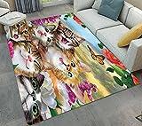 LB Kitty Anti-RutschBoden Teppich Läufer Matte für Wohnzimmer Schlafzimmer 50 X 80cm