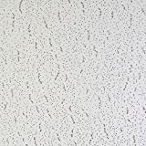 Armstrong Tatra Suspended Ceiling Tiles by Tatra 6x6