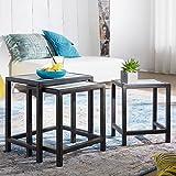 FineBuy Beistelltisch 3er-Set PINTU Massivholz/Metall Satztisch Shabby-Chic | Vintage Abstelltisch massiv | Design Couchtisch 3 teilig | Designer Tisch Holz modern | Beistelltischchen Ausgefallen