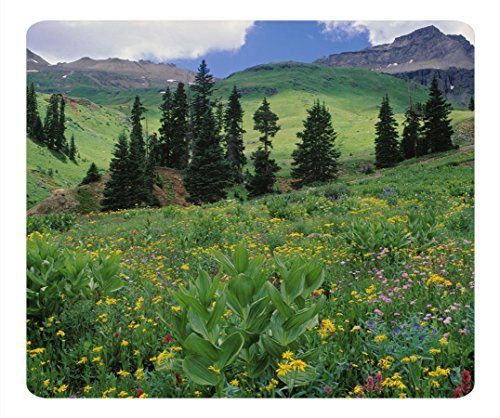 Alpine Meadow Of Sneezeweed Colorado Customized Non-Slip Rubber Mousepad Gaming Mouse Pad Alpine Slip