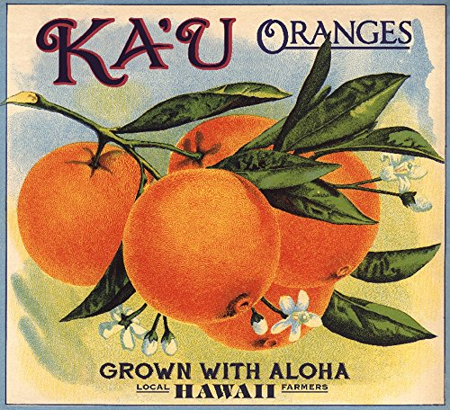 Hawaii - KA 'u Orangen - Citrus Crate Label, Papier, multi, 16 x 24 Giclee Print - Orange Crate Label