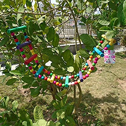 Bello Luna Rainbow Parrot Ladder Flexible Wooden Swing Toys for Bird 6