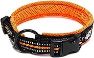 PetsUp Dog Collar Neck Belt for Small Medium Large Dogs (Small, Reflective Collar- Orange)