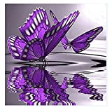 AIHOME 5D DIY Diamond Embroidery Butterfly Paintings Pasted Cross-Stitch Colorful Room Decoration