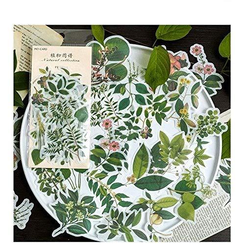Aolvo Ephemera-Set, Notizsticker im Stil von tropischen Pflanzen -