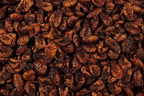 100g-Premium-Natural-Dried-Silkworm-Pupae-Terrapin-Reptile-Food-Turtle-Koi-Pond-Fish-Food