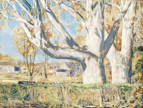 Das Museum Outlet–The Giant götterbäume, Oktober, 1931, gespannte Leinwand Galerie verpackt. 50,8x 71,1cm