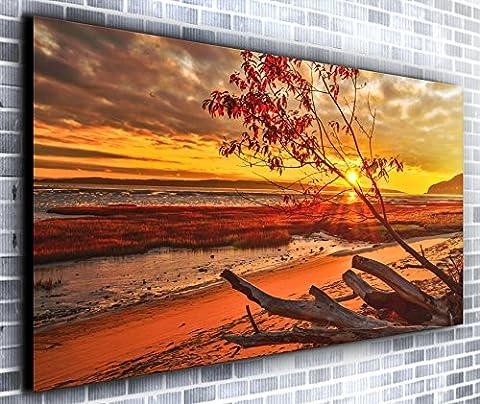 Strand Treibholz Panorama Wandbild auf Leinwand, gerahmt, XXL 139,7x 61cm über 4,5Ft breit x 2ft Hoch bereit Kunstdruck auf Leinwand–Landschaft–Modern Art