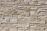 fliesenmax Beton Steinverblender Abra beige 9,2x20-33x2,4cm Steinoptik