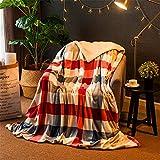 Flauschige Decke I Tagesdecke 150cm x 200 cm I Fleecedecke für Wohnzimmer Schlafzimmer Sofa I warm kuschelig I Kuscheldecke I verschiedene Versionen I Wolldecke