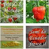 Trinidad Moruga Scorpion -20 semi / variante rosso - più caldo peperoncino in tutto il mondo !!! + 5-8 semi di una varietà di peperoncino - !!!